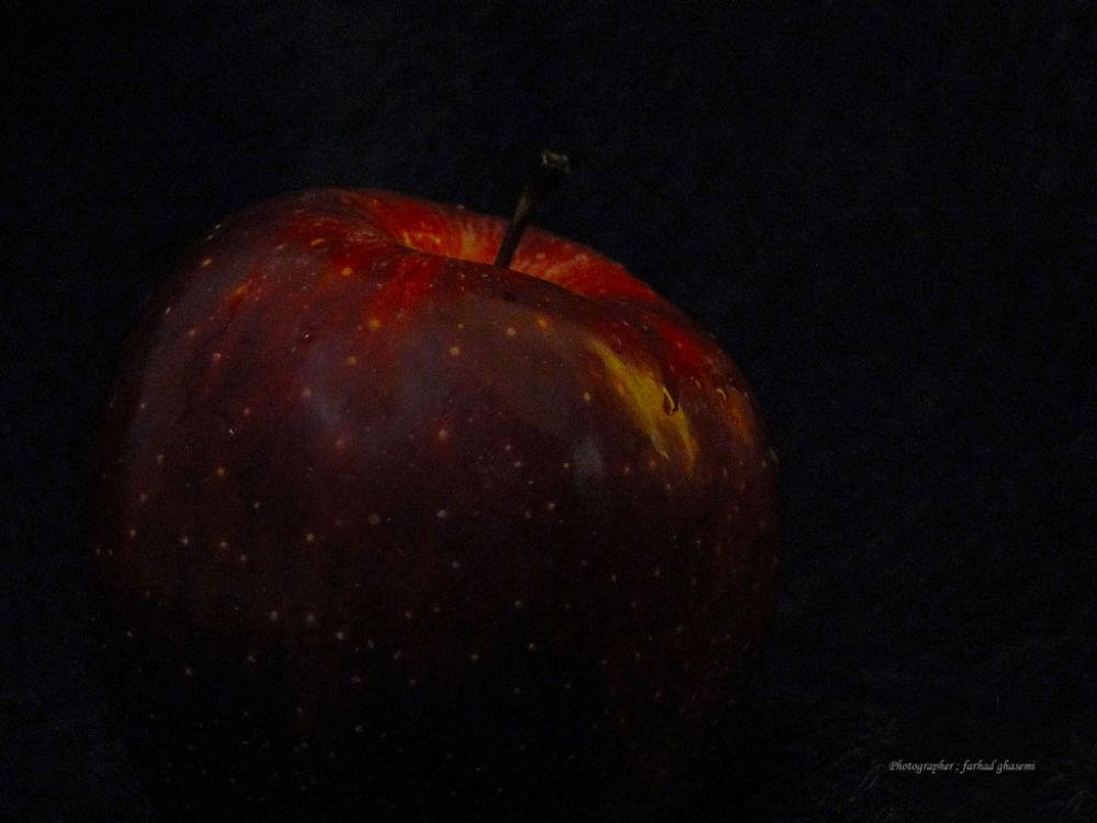 DSC05509f by Farhad Ghasemi