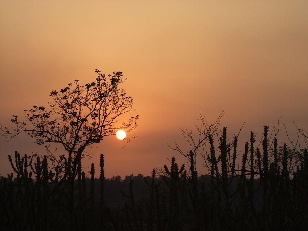 An evening by Vivek Tavate