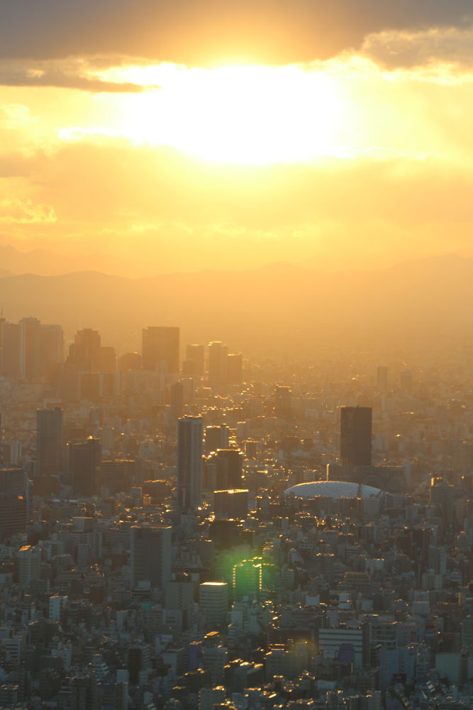 Tokyo Sunset by Mona Meyer Ohya