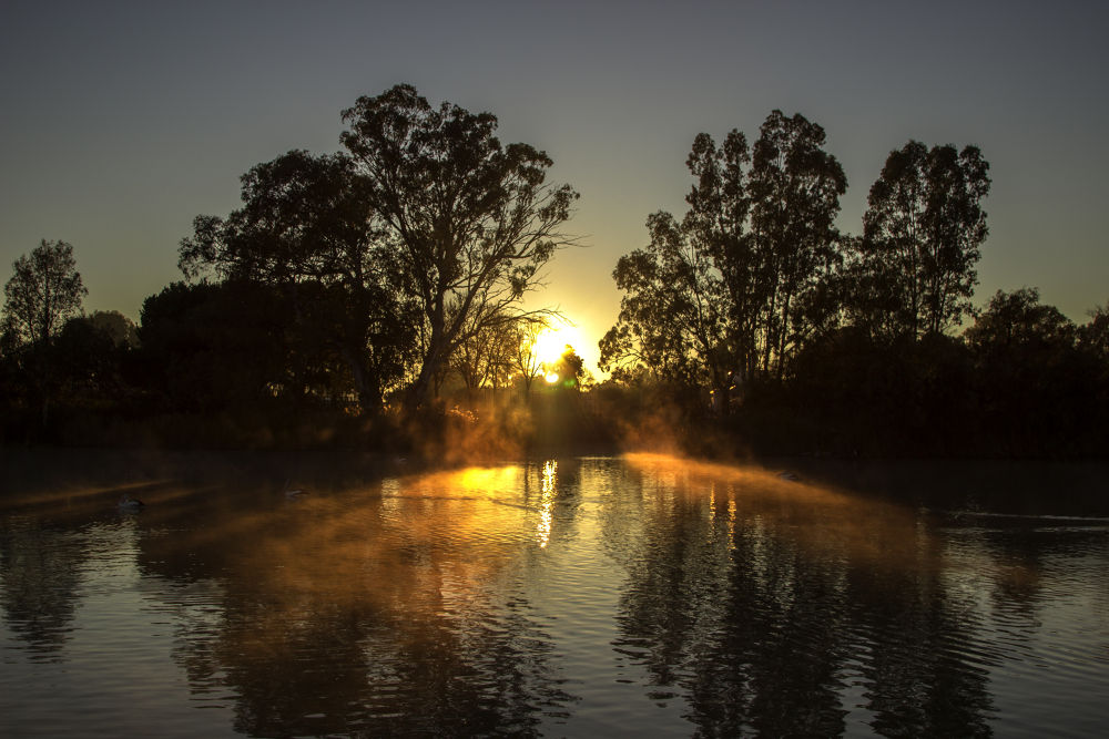 Murray River  by Nicola Smith