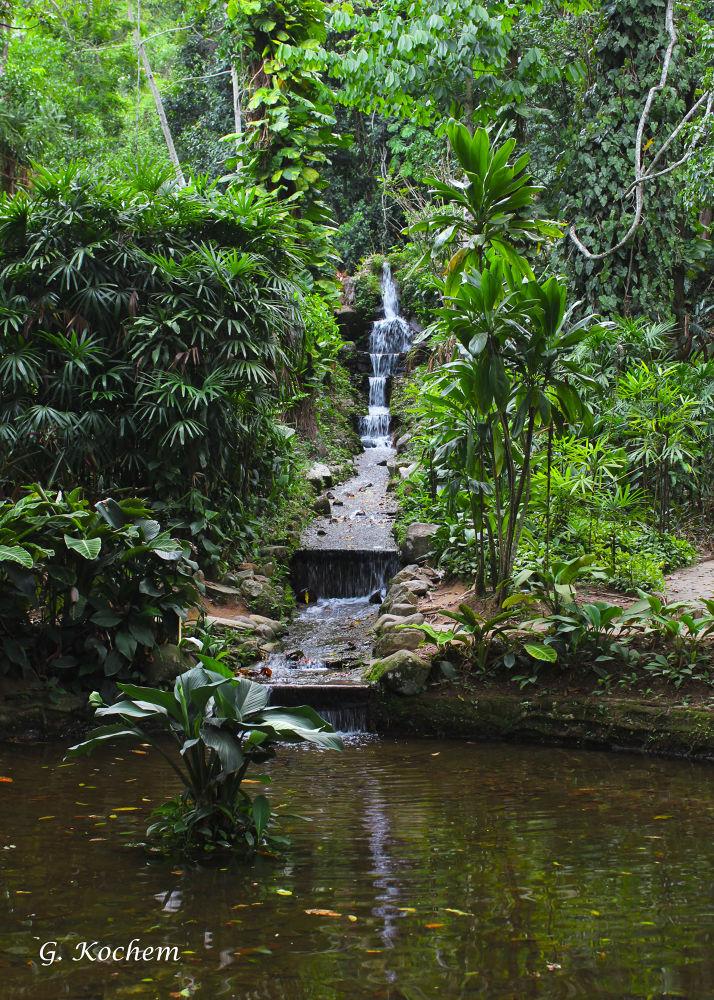 Cachoeira Jardim Botânico by gkochem