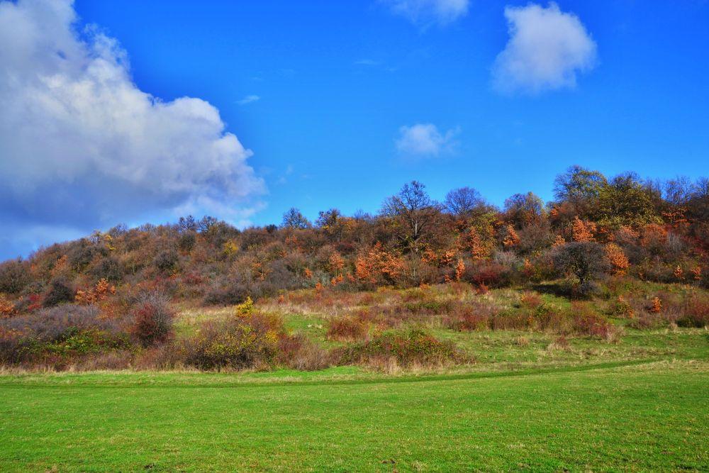 Beautiful autumn by Jožo Kozlok