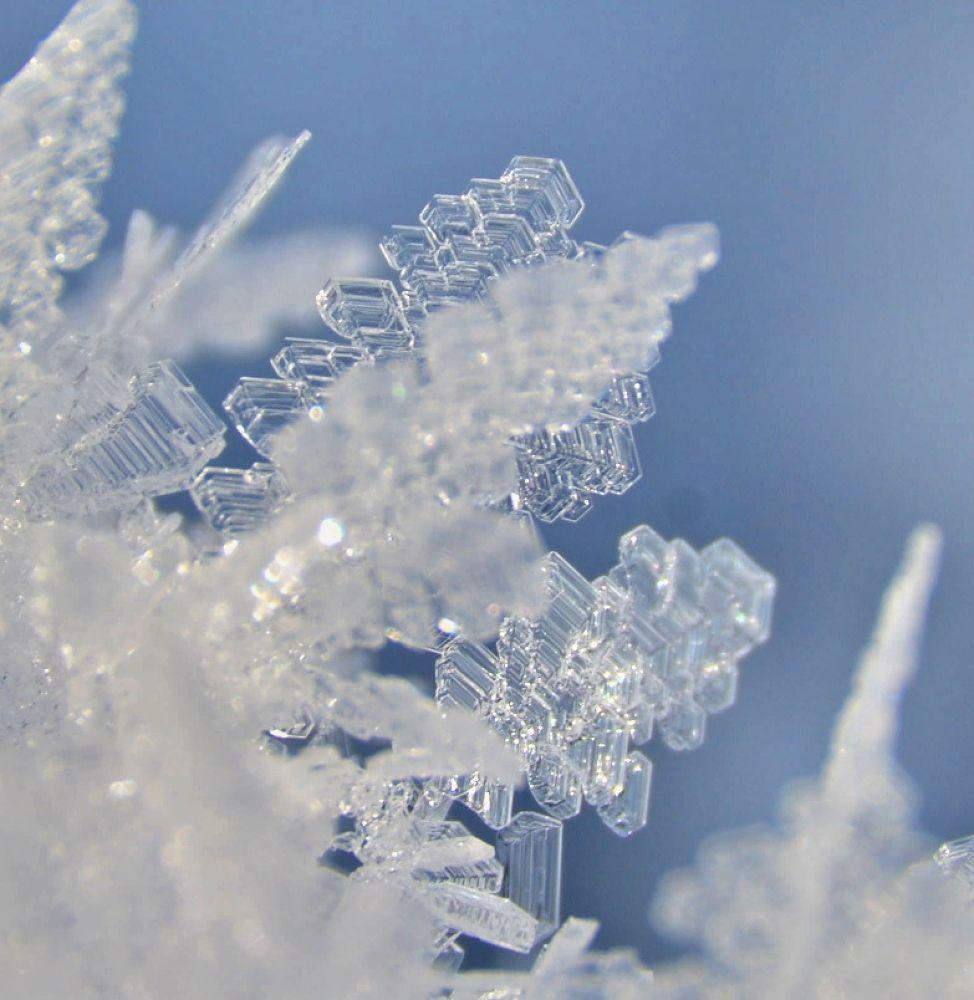 Snowflakes by Jozef Kozlok