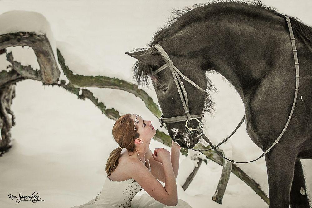 ...some kind of cinderella... by KS -Tierfotografie