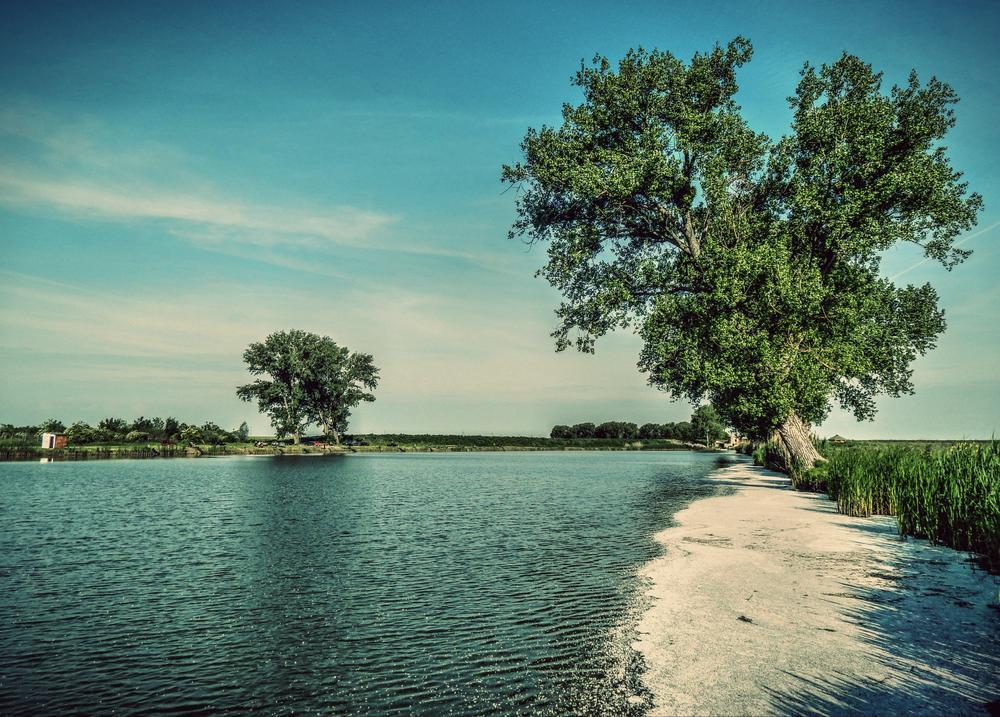 waterscape by Nenad Milic