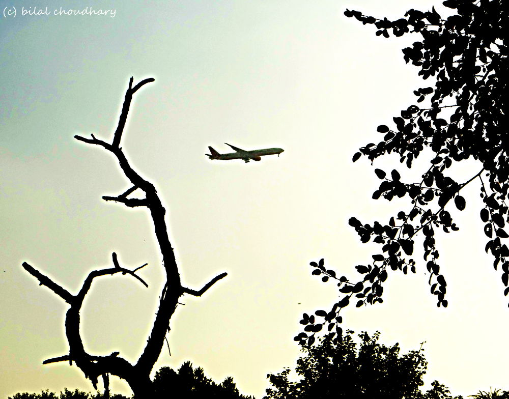 UDAAN by Bilal Choudhary