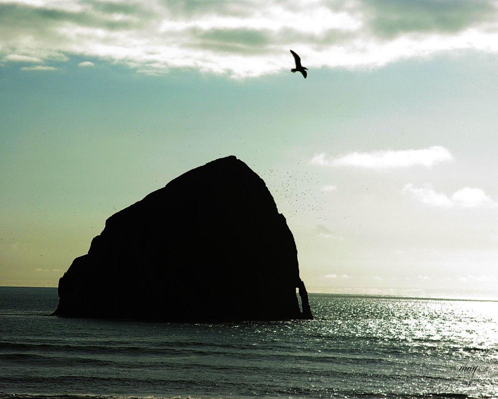 Haystack Rock  by Marilyn Mock Peterson