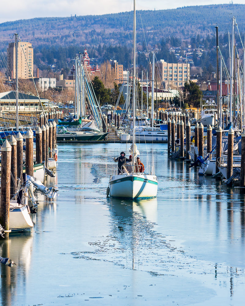 Coming Home. Bellingham, Washington by David Johnson