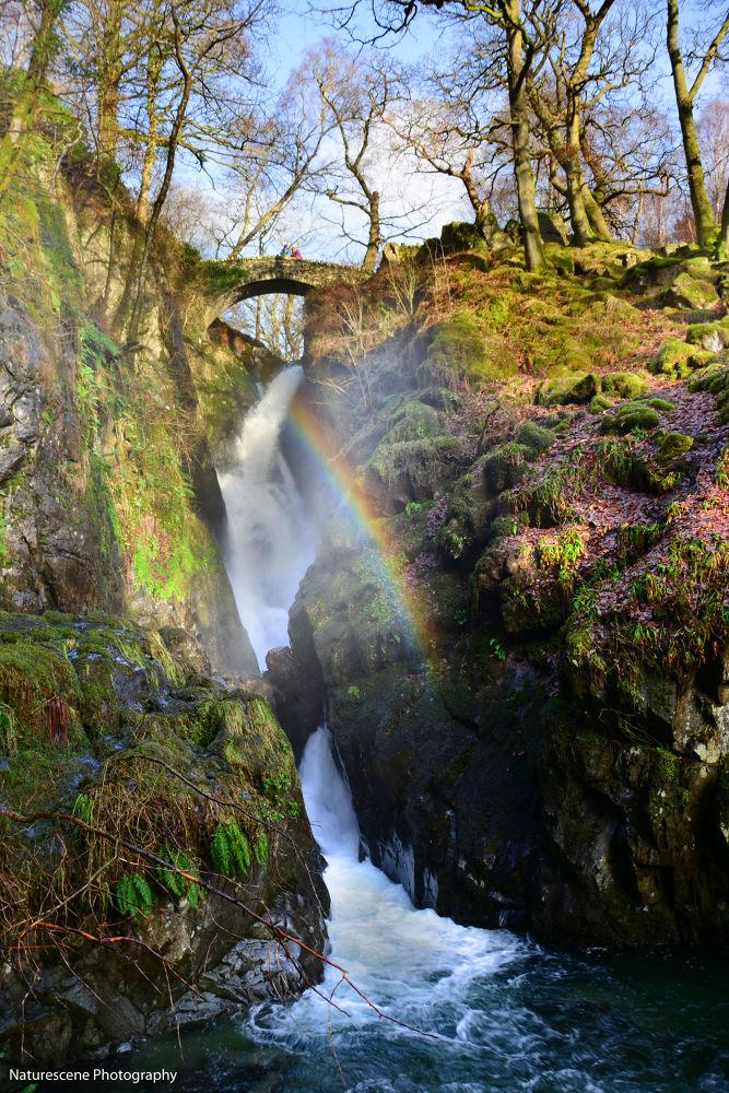 Rainbow Falls by Matt Lindsay
