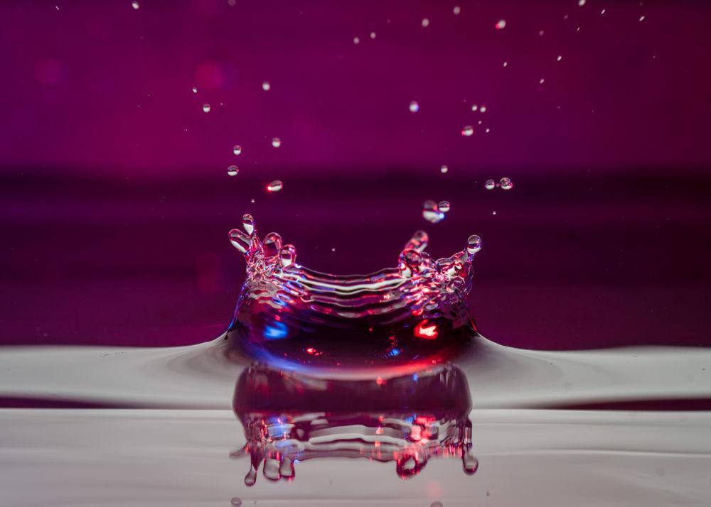 Macro - Water drop by F/StopMedia Photography
