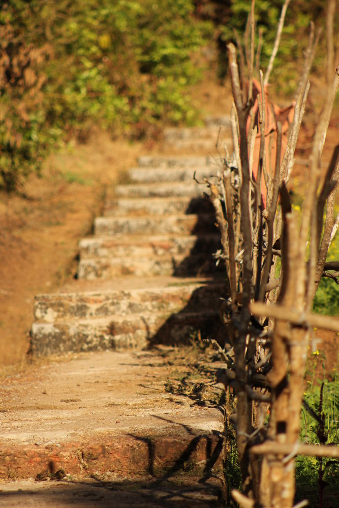 steps by Rigved Gawde