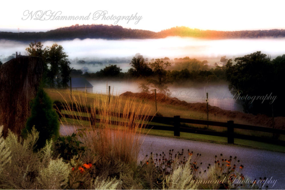 Misty Morning II by NLHammondPhotography