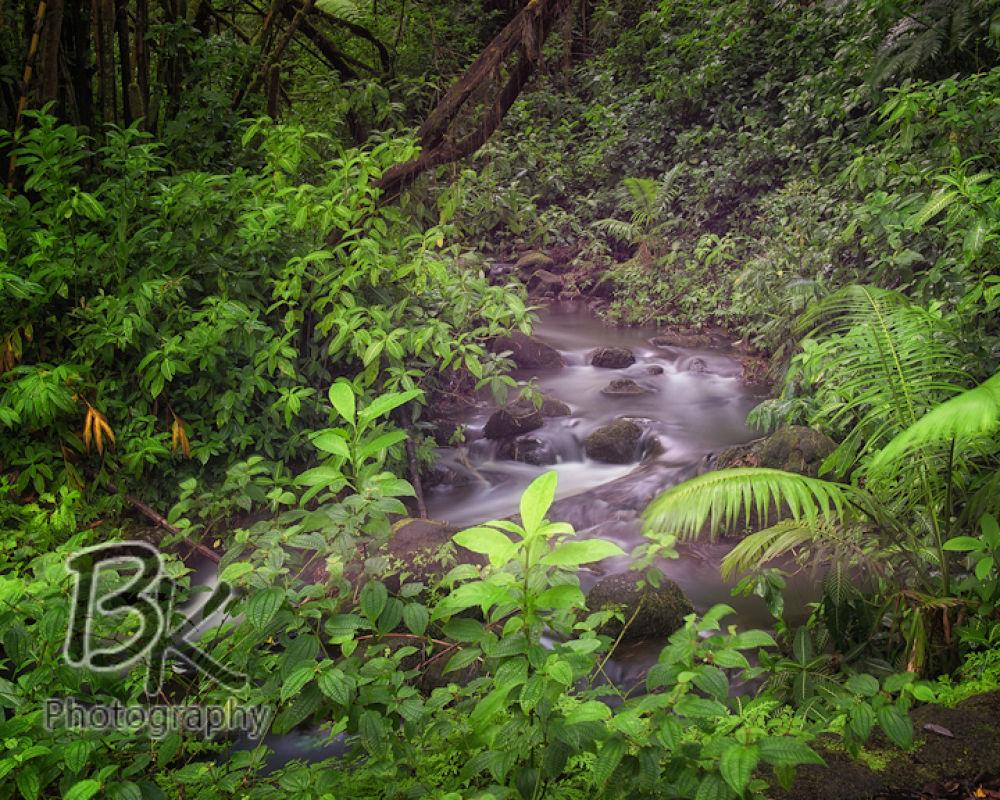 Hawaii Big Island -112 - Copy by Bill Klingbeil