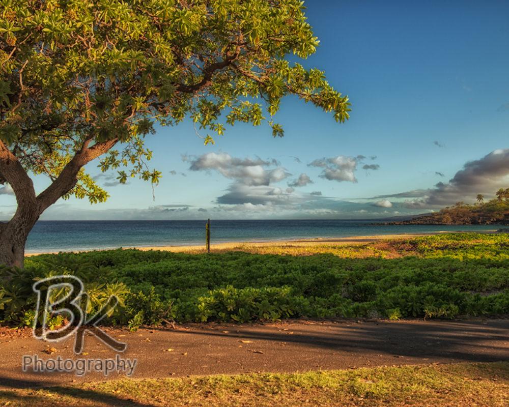 Hawaii Big Island -91 - Copy by Bill Klingbeil