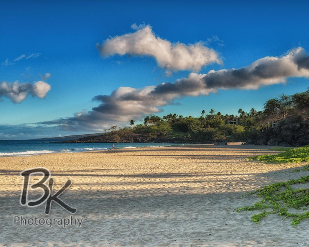 Hawaii Big Island -90 - Copy by Bill Klingbeil