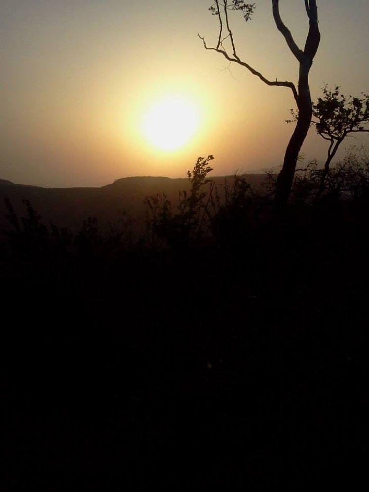 sun view by Richa Sharma