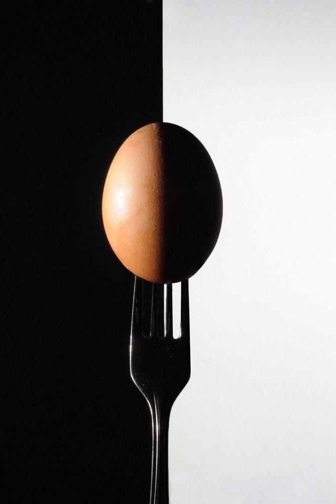 Egg by muhammadmunir