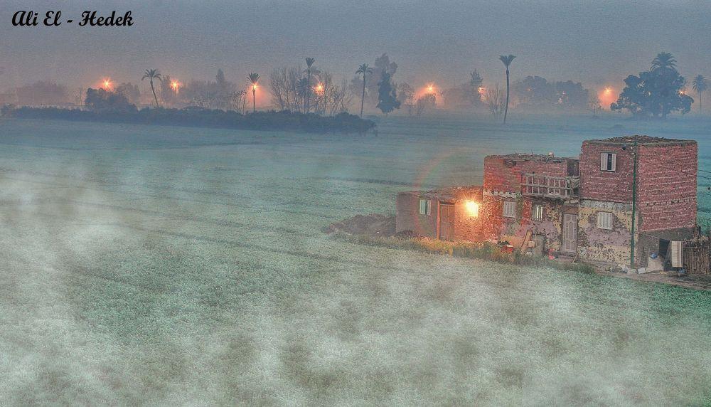 Misty Day .. by alialhedek