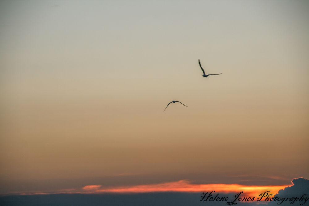 sunset by Helen Jones