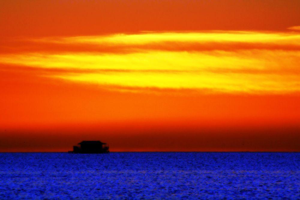 Orange Sky by Rose Pisano