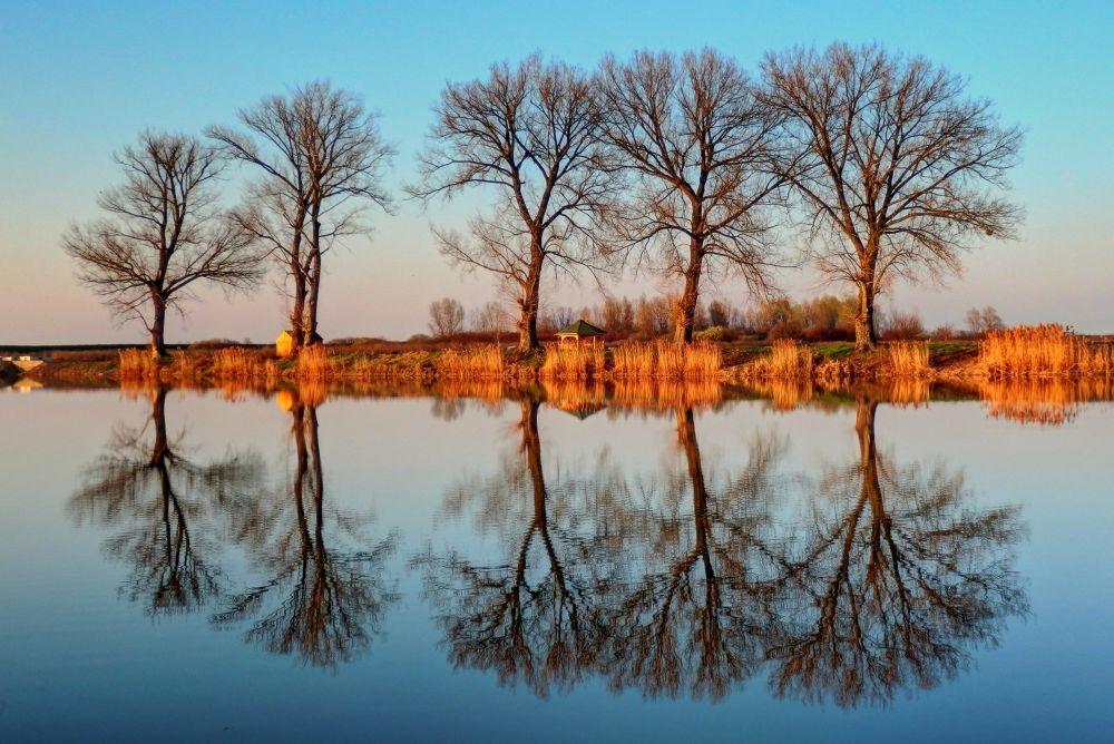Reflection on Lake  by Željko Salai