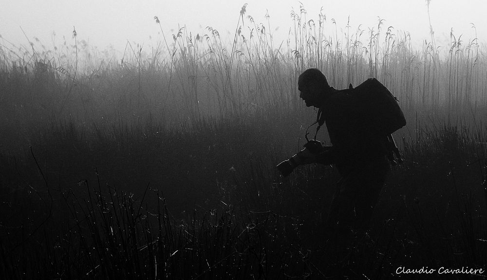 AGAINST THE FOG by claudio cavaliere