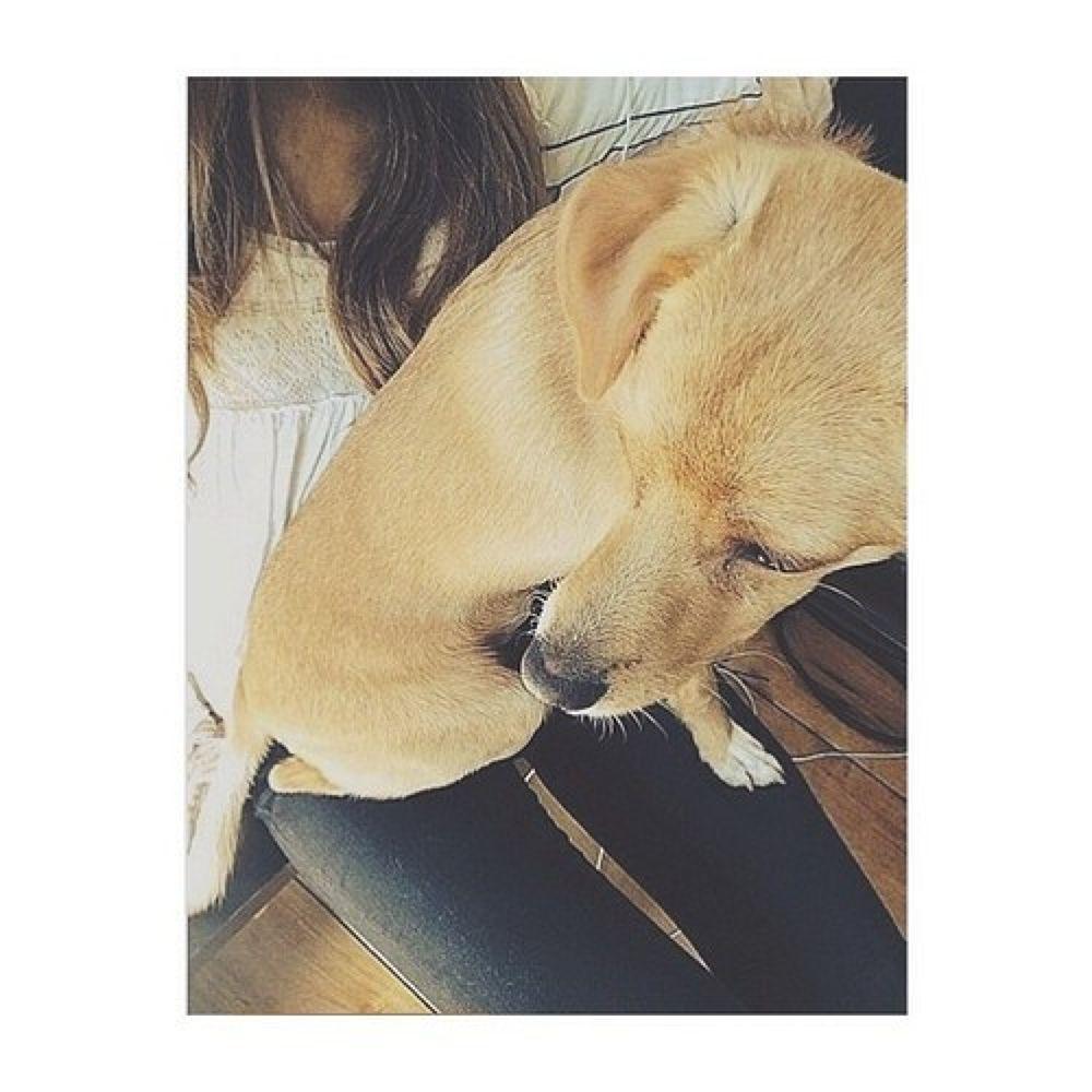 ☺♥ by Ariana Grande  ✔