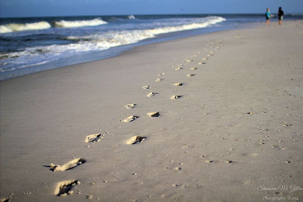 Footprints in the Sand by Shannon Gillen