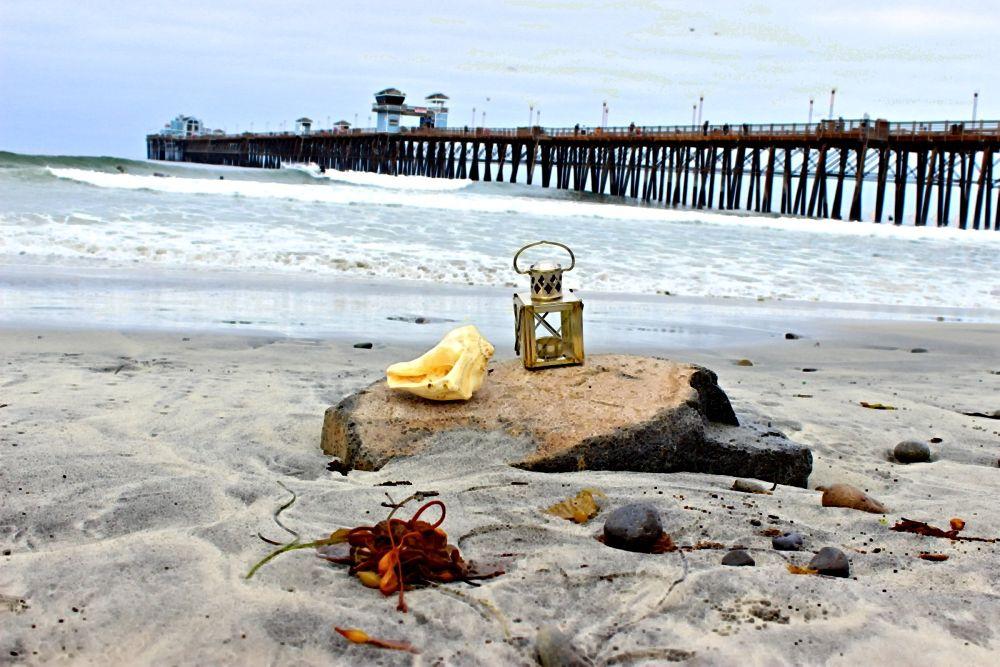 Beach still life by Deborah Divis
