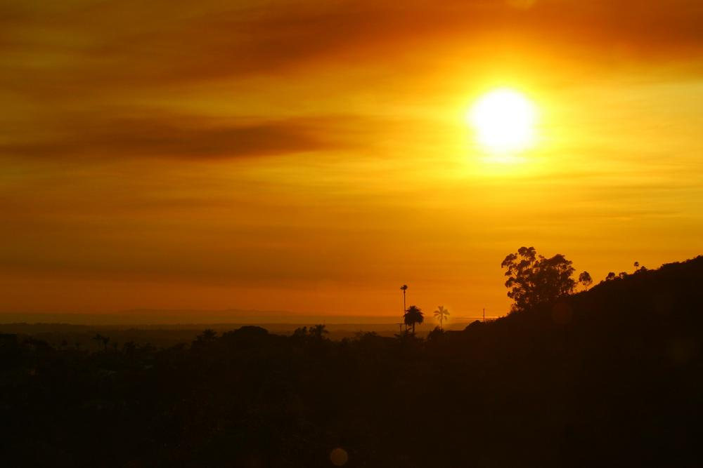 Photo in Landscape #fire sunset