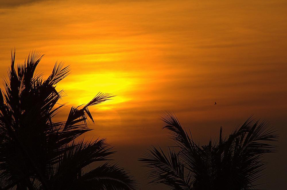 Sunset by Saravana Kumar