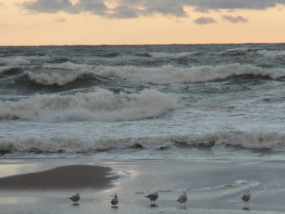 DSC06189 Baltic sea by SigitaBer