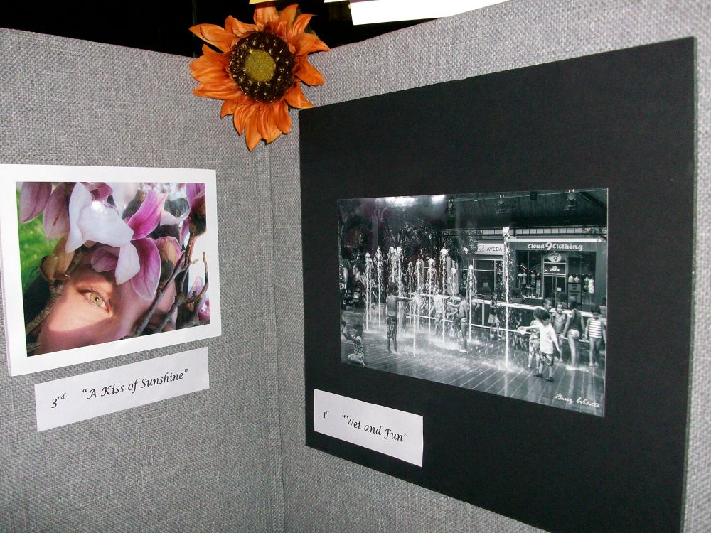 KMCB Annual Photography Contest 2013  by NatalyaParris