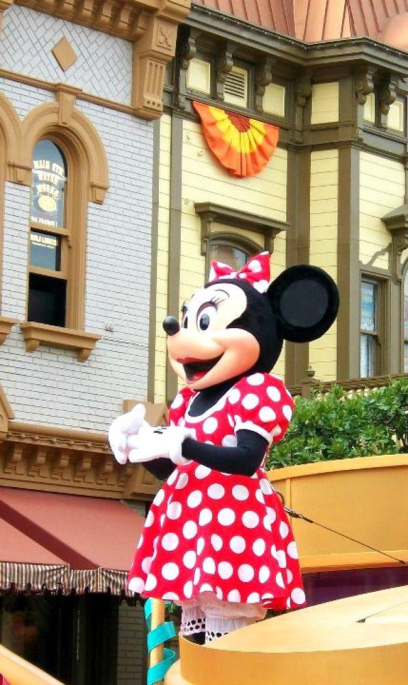 Minnie Mouse by Tiffany Boyd