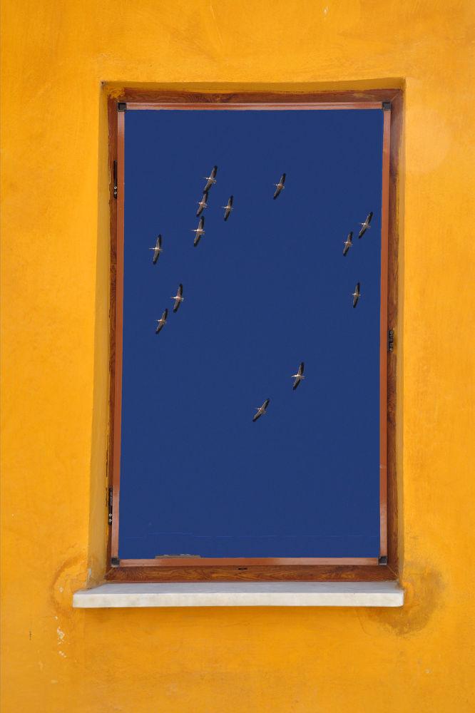 my windows by fatmagokmen64