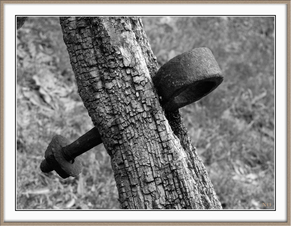 Iron vs wood by Philippe Caumont