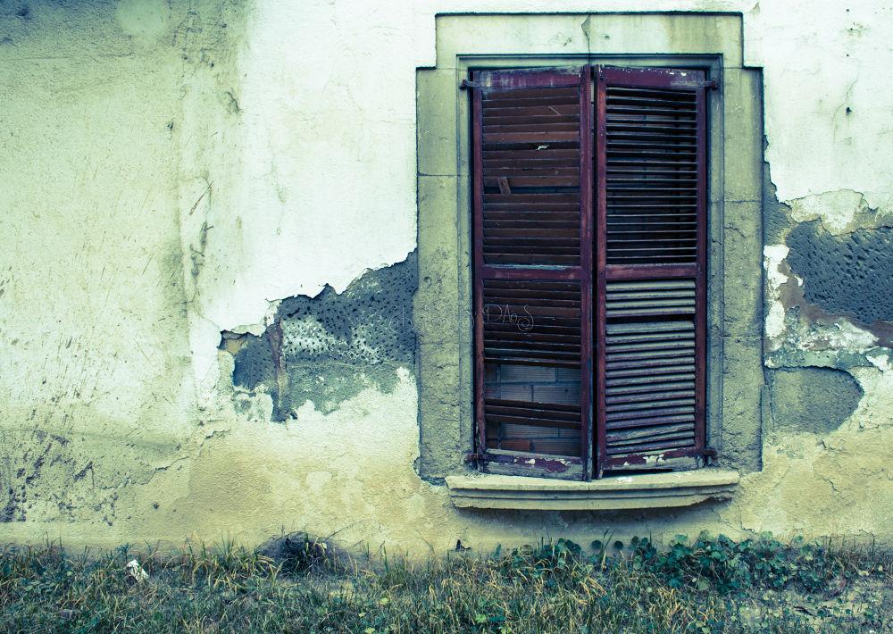 Window by Chris Das