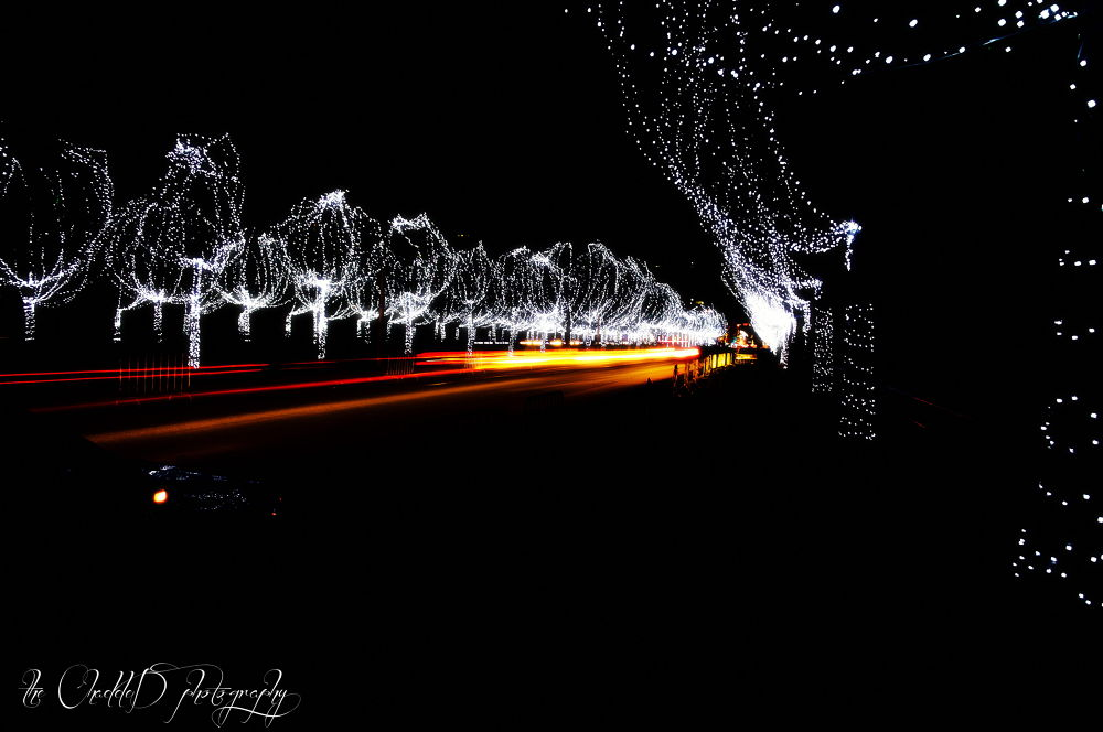 Christmas lights by Thechadded
