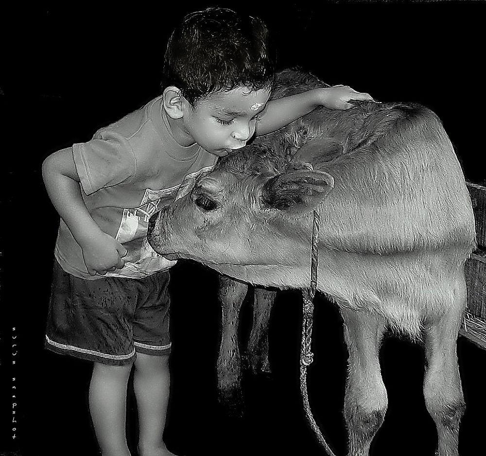 Innocence..!! by surunair