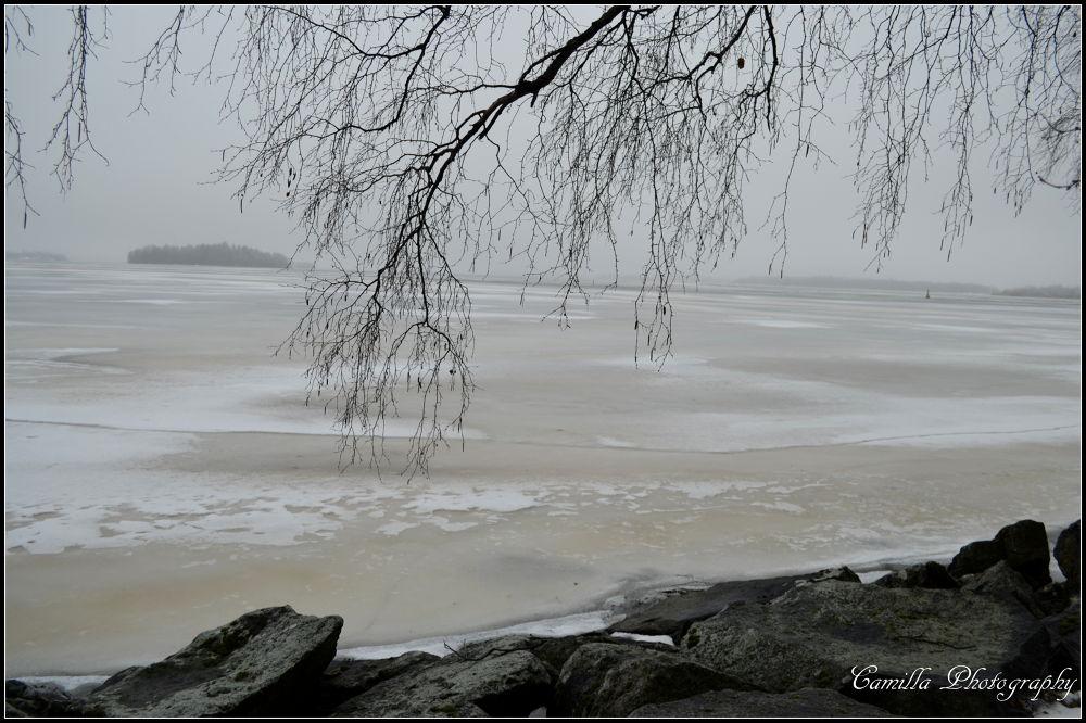Lake Mälaren, Sweden  by CAmilla