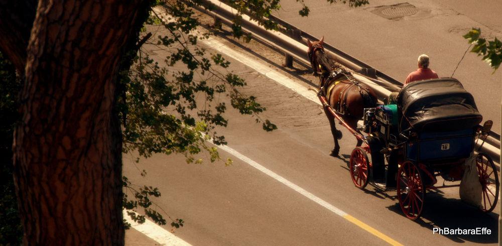 La carrozzella va..... by barbaraeffe