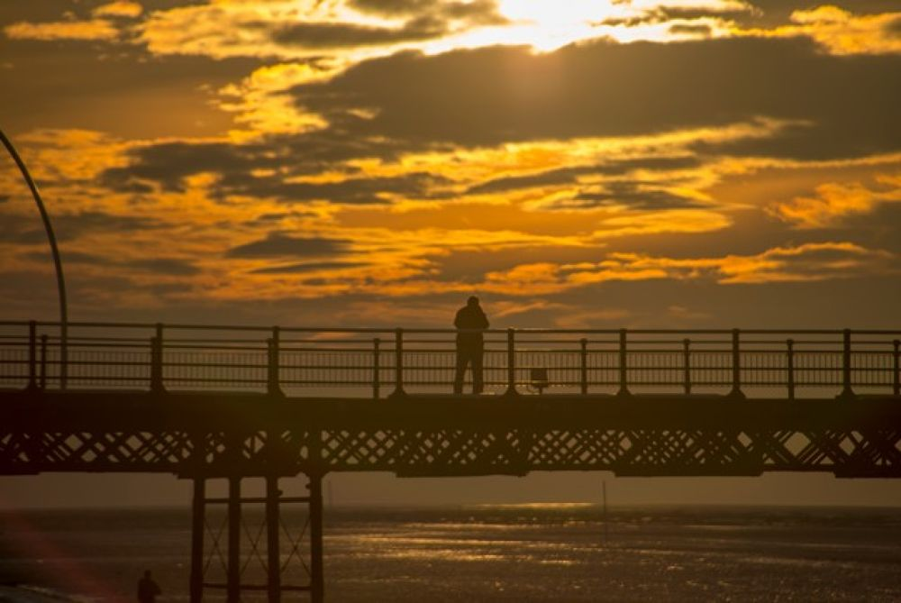 IMG_2372 by AndyHarrison