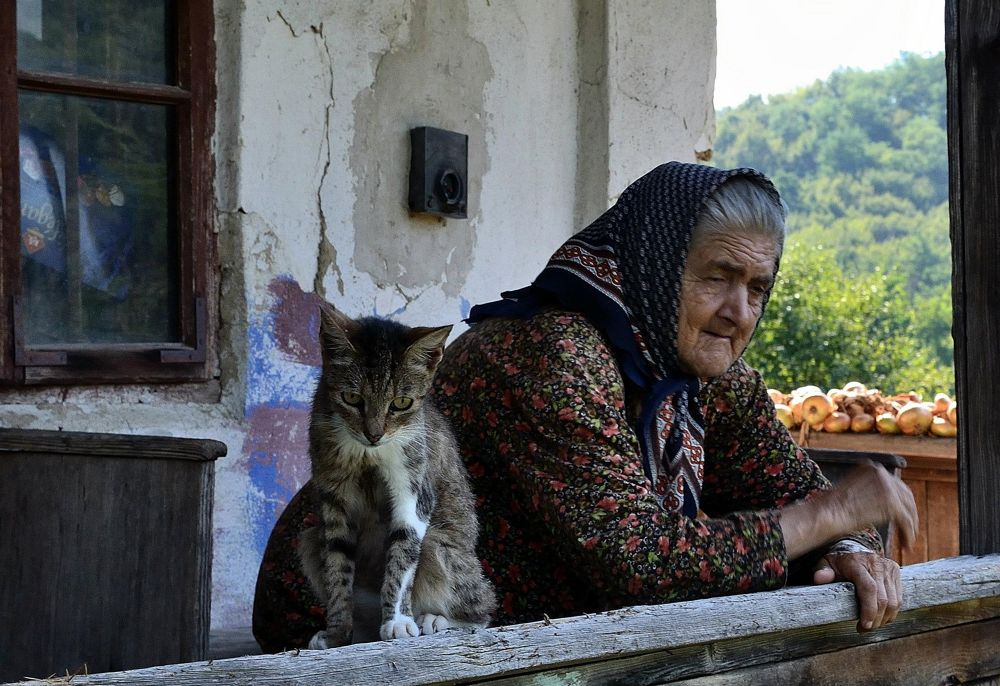 Grandma and the cat. Each with her thoughts and memories... by cito