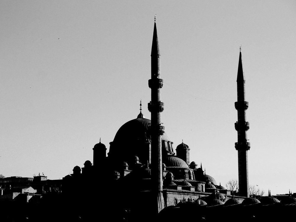 .. by Rena Mustafazade