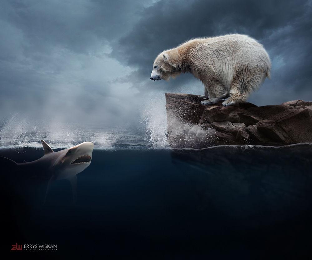 Beruang+Hiu by Errys Wiskan