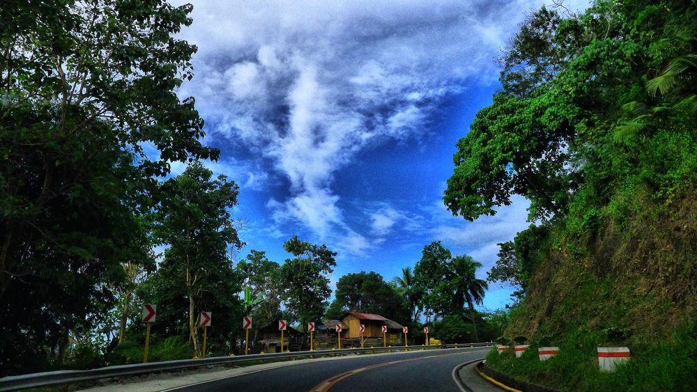 THE ROAD by BobTan