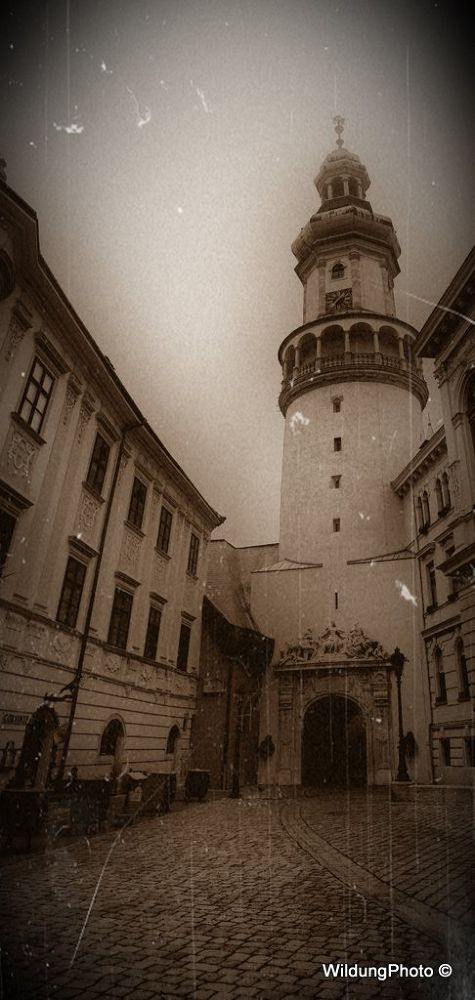 Sopron by Wildung