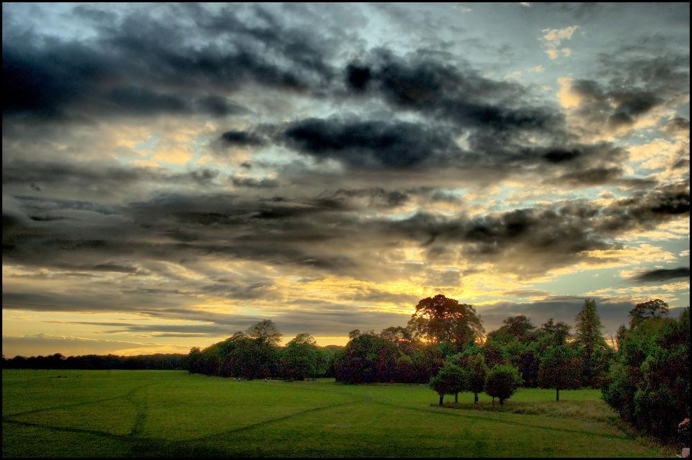 Phoenix park, Dublin by mik70