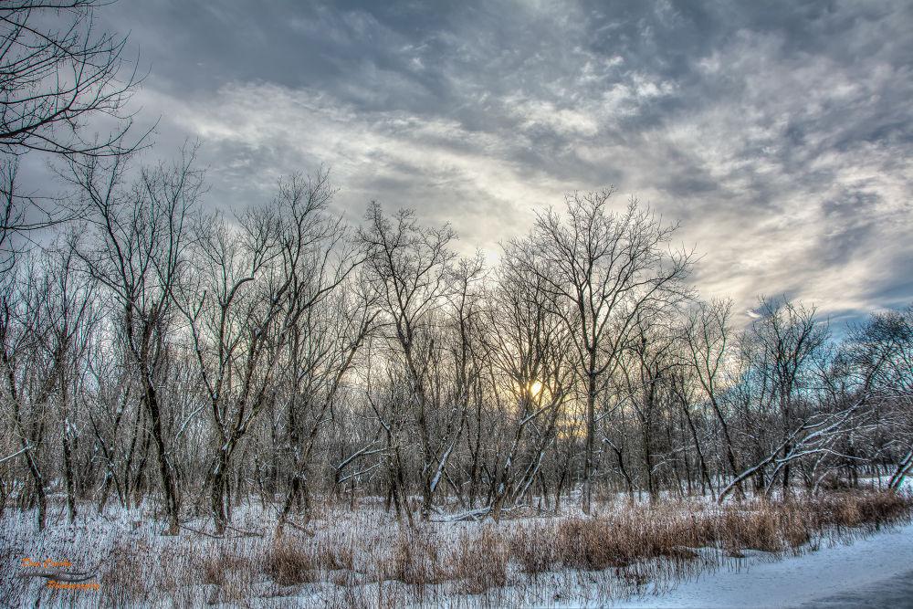 Winter Trail by Dan Crosby