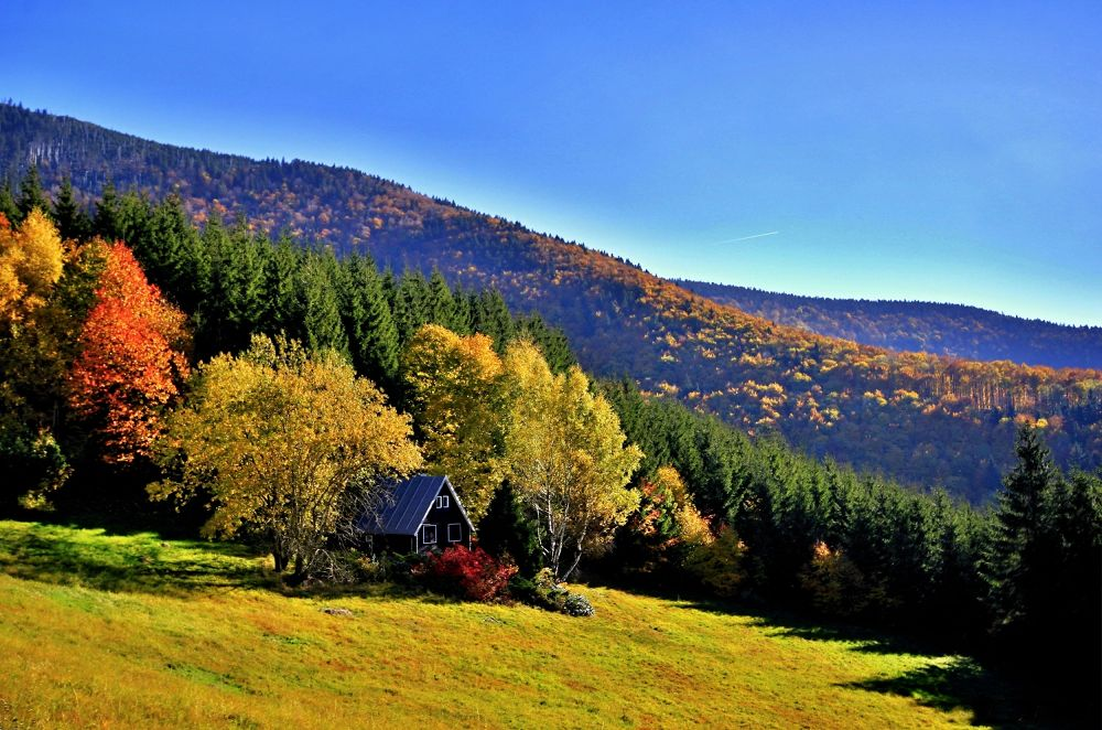 Autumn on the mountains by Stenly Priesol